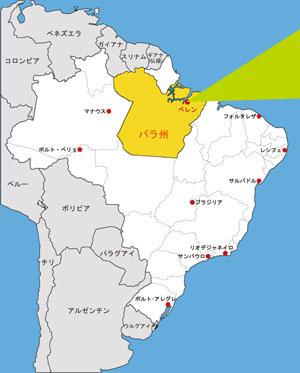 ブラジルの活動報告|海外環境保...